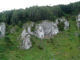 Dolina Kobylańska - skałki
