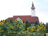 Janowice - kościół