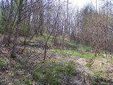Przed parkiem w Grabówkach