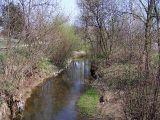 Rzeka Wilga